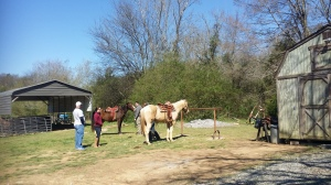 Visitors to Barnsley Gardens can ride horses to tour the grounds.